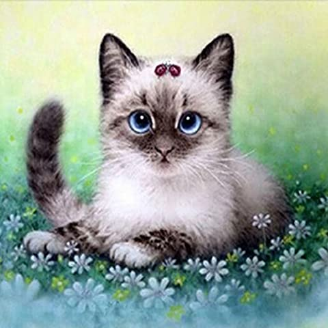 5D DIY Diamond Painting by Numbers Kits, Crystal Full Drill Embroidery Cross Stitch Rhinestone Mosaic Drawing Art Craft Home Wall Decor, Siamese Cat 11.8*11.8 Inch