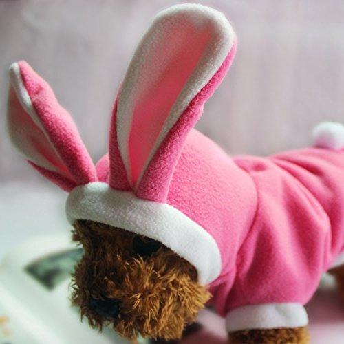 Hund Kleidung Herbst und Winter Pet Kostüm Halloween Weihnachten Lovely Kaninchen
