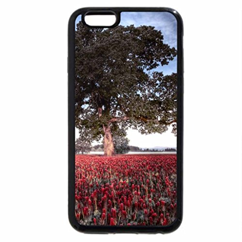 iPhone 6S / iPhone 6 Case (Black) Field in Spring
