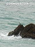 Cornovaglia: Fuori dallo stress senza stress, da Penzance itinerari in solo trip nella Cornovaglia del Sud Ovest (Italian Edition)