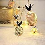 Dremisland 10-Licht 5Ft Goldmetall Mesh Ananas LED Lichterketten Lichtdraht mit batterie Neuheit Lichterketten Für Schlafzimmer Hochzeits Patio Party Weihnachtsfest Dekoration (warmes Weiß, Gelb)