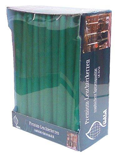 Caso di Verde 25cm candele affusolate. Di alta qualità per casa/eventi/ristoranti.
