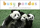 Busy Pandas (Busy Books) (Busy Books (Tricycle Press))