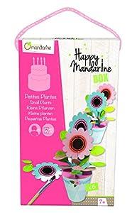 Avenue Mandarine - Happy Mandarine Box, Pequeñas Plantas (KC010O)