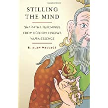 Stilling the Mind: Shamatha Teachings from Dudjom Lingpa's Vajra Essence by B. Alan Wallace (2011-08-16)