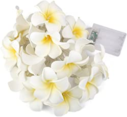 Generic Battery Operated Plumeria Flower String Fairy Light Lamp For Wedding Christmas Diwali Home 78Inch
