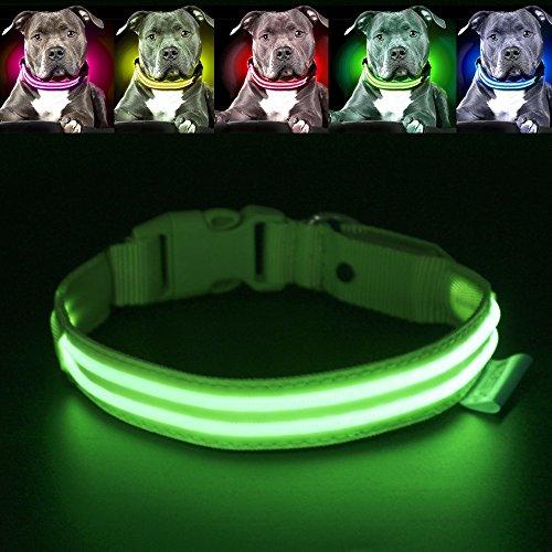 LED Hundehalsband Sicherheit Halsband Doppel-Streifen-Ihren Hund gesehen und sichere ()