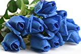 FiveSeasonStuff® 10 Long Stems (53cm) Blue Real Touch Silk Roses 'Petals Feel and Look like Fresh Roses' Artificial Flower Bouquet Floral Arrangement, Perfect for Wedding, Bridal, Party, Home, Office Décor DIY - FiveSeasonStuff - amazon.co.uk