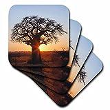 3drose afrikanischen Baobab Baum, Tarangire National Park, tanzania-af45aje0263–Adam Jones–Soft-Untersetzer, Set 4(CST _ 69974_ 1)