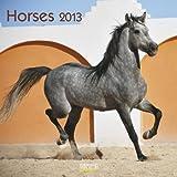 Horses 2013: Broschürenkalender mit Ferienterminen