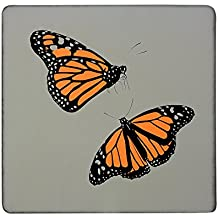 Monarch mariposas rígido cuadrado imán para nevera
