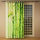 Clever-Kauf-24 Schlaufenschal Vorhang Gardine Bambus Rechts BxH 145 x 245 cm   Sichtschutz   Lichtdurchlässiger Schlaufenvorhang mit Druckmotiv