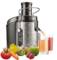 1.000 Watt Saftpresse Edelstahl elektrischer Entsafter Obstpresse Power Juicer für ganze Früchte