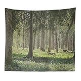 Xmiral Tapisserie Natürlich Wald Landschaft Yogamatte Picknickdecke Wandteppich Wanddeko 150X200cm(B)