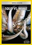Squid vs. Whale kostenlos online stream