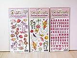 Porzellansticker-Set 7, Pegasus, Sternenfee, Schrift Pink + Gratis Anleitungsbuch