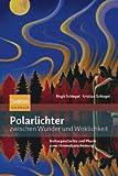 Polarlichter zwischen Wunder und Wirklichkeit: Kulturgeschichte und Physik einer Himmelserscheinung - Kristian Schlegel