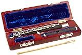 Roy Benson PC-602 Flûte piccolo avec Etui en bois
