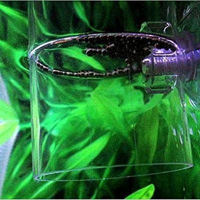 Vige Aquarium Fütterungskreis Acryl Fütterungsring Trompete SiYuan Aquarium Fütterungsring Aquarium Fisch - Transparent - S