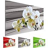 Bilder – Wandbild - Vlies Leinwand - 70 x 40 cm - Orchidee Bild - Kunstdrucke – mehrere Farben und Größen im Shop - Fertig Aufgespannt !!! 100% MADE IN GERMANY !!! - Blume – Abstrakt 202014b