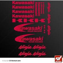 Adhesivos de Kawasaki Ninja Team Racing, color rojo, hoja de 20adhesivos, Z750, Z1000, ZXR, ZX6R, ZX12R, ZX9R, ZX7R, Z800