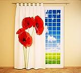 Clever-Kauf-24 Schlaufenschal Vorhang Gardine Mohnblumen BxH 145 x 245 cm | Sichtschutz | Lichtdurchlässiger Schlaufenvorhang