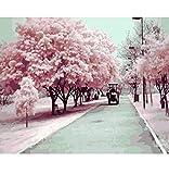Sakura 1 Año De Edad Juguetes - Best Reviews Guide
