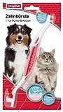 beaphar Zahnbürste für Hunde und Katzen | Hunde- & Katzen-Zahnpflege | Hundezahnbürste für gepflegte Zähne | Ergonomischer Griff | 1 Stück