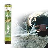 [50101070] Plantex Premium Heckenvlies, Gartenvlies   Größe: 10qm (0.5x20m)   Garantie: 20 Jahre   reißfest