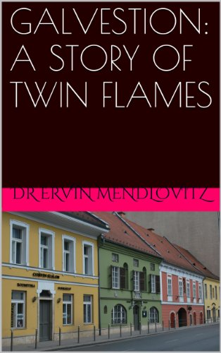 GALVESTION: A STORY OF TWIN FLAMES (English Edition) eBook: ERVIN