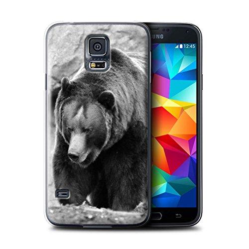 Stuff4 Hülle / Hülle für Samsung Galaxy S5 Mini / Bär Muster / Zoo-Tiere Kollektion - Amys Bären