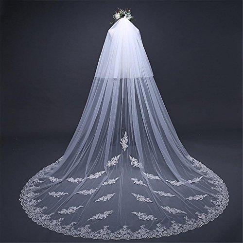 Vestito da cerimonia nuziale3 * 3.8m merletto squisito di stile europeo che fa il merletto del ricamo ultra-molle grande allungamento del trailing widening veil velare nuziale