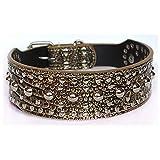 Dogs Kingdom 50,8cm–66cm Pilze Nieten Leder Hundehalsband Pitbull Boxer Hunde Halsband verstellbar
