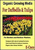 Portal Cool 1 Litro: Orgánica del narciso y Tulip compost, turba del suelo libre para Narciso, Jonquil y tulipanes
