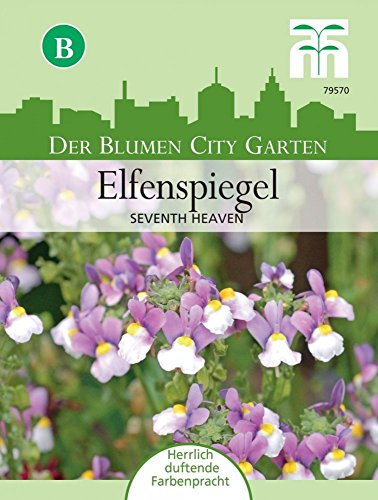 Elfenspiegel Seventh Heaven | Elfenspiegelsamen von Thompson & Morgan