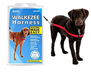 Company of Animals Walkezee Harnais anti-traction pour chiens Taille M
