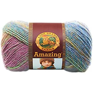 Lion Brand Yarn Company 1-Piece Amazing, Carnival, Multi