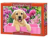 Castorland Labrador Puppy in Pink Box 500 pcs Puzzle - Rompecabezas (Puzzle Rompecabezas, Fauna, Niños, Perro, Niño/niña, 9 año(s))