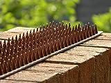 Garden Mile marron clôture grillage jardin sécurité intrus OISEAU Répulsif chat cambrioleur Anti Escalade pics. a Humane et pigeon contrôle deterrent. humain ANTI-PARASITES anti-roosting répulsif.