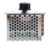 sharplace Regolatore di tensione Velocità motore di CA 220V 4000W SCR Que MacBooks modulo di...