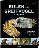 Eulen und Greifvögel Europas: Faszinierende Jäger der Lüfte im Porträt - Kerstin Viering
