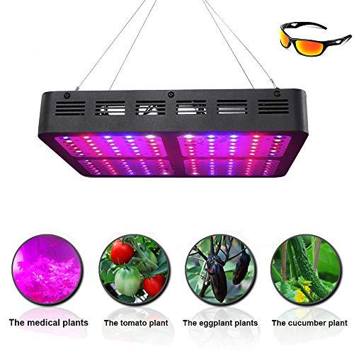 Wachsende Lichter der 1200W Doppelchip-Anlage,Schnelles Wachstum LED Grow Light,UV/IR-Gewächshauslampe mit vollem Spektrum,mit Professional Brille