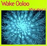Songtexte von Wake Ooloo - What About It