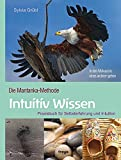 Intuitiv Wissen (Amazon.de)