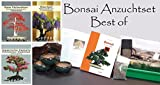 Seedeo Bonsai Anzuchtset deluxe Best of (Roter Fächerahorn , Blauregen, Japanische Kamelie)