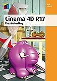 Cinema 4D R 17: Praxiseinstieg (mitp Professional)