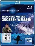Discovery HD: Jeff Corwin - Begegnung mit dem großen Weißen Hai [Blu-ray]