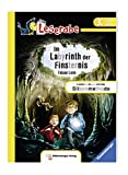 Im Labyrinth der Finsternis (Leserabe mit Mildenberger Silbenmethode) - Fabian Lenk