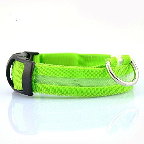 Haustierhundehalsband, Nacht-Sicherheits-Blitzen-Glühen im dunklen Hundeleine, Hunde Luminous Fluorescent Halsbänder Tierbedarf [L Grün] ()