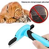 Haustier Pflege Pinsel, VersionTech Hund und Katze Bürste zum Vergießen selbst reinigen für Medium & großer Hund und Katze, effektiv reduziert vergießen Haare um bis zu 90 % - 7